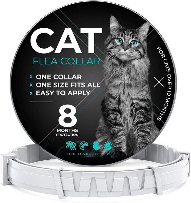 Cats Flea Collar