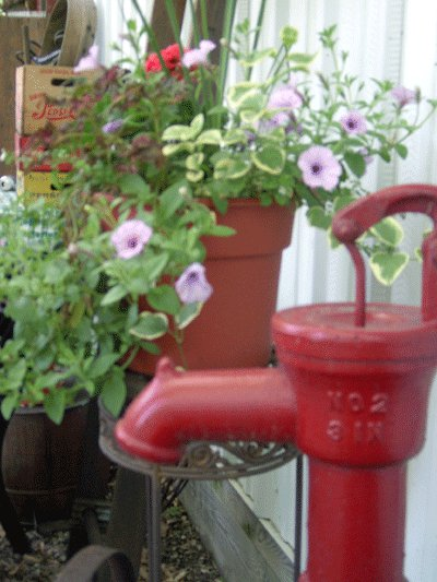 """Got to LOVE the old water pitcher pumps! My husband buys and sells many pitcher pumps. We have many pumps in our yard. If you buy one that needs to be painted he uses Rustoleum Regal Red."""