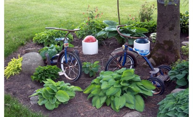 Two blue trikes in a garden bed were my daughters' ‎ It takes Ron over 4 hours on the 52in. deck rider to mow the grass. This is my Park --7 garden hoses from the nearest water!!!