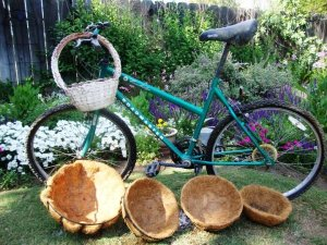 bicycle 'garden'