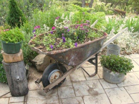 Plant A Rusty Wheelbarrow For The Garden Flea Market Gardening