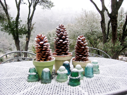 """Christmas tree pots"" and aqua glass insulators, dusted with snow"