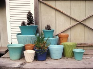 Vintage flower pots are an obsession