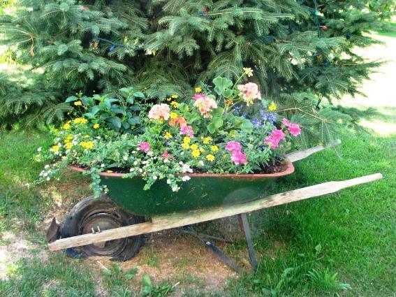 A very nice real garden