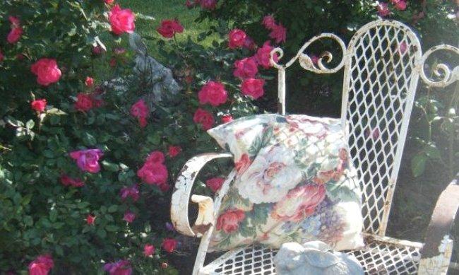 "Barbara Vengalli, ""Some chippy, rusty iron amongst the beautiful roses."""