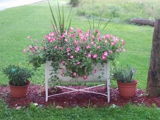 "Dawn Mulkey Query, ""Here's my double wash sink planter."