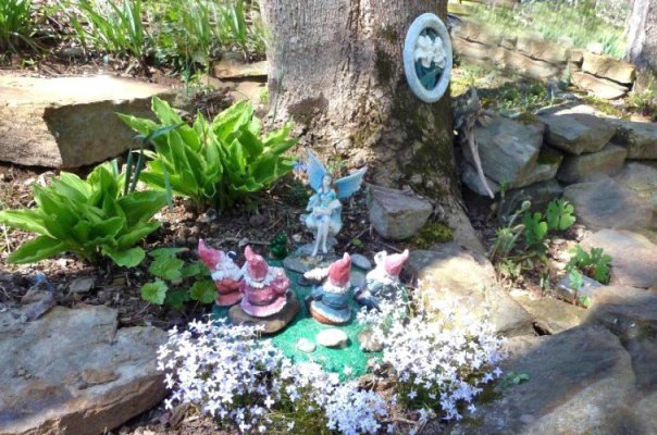 "Cheryl York's fairy tells a group of gnomes, ""what for and how to..."""