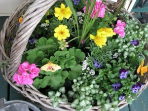 A heavy woven basket,..perfect for bright flowers