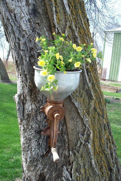 Sue Gerdes' unique tree 'pot'