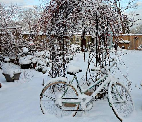 Linda Gladman's Winter bicycle vignette