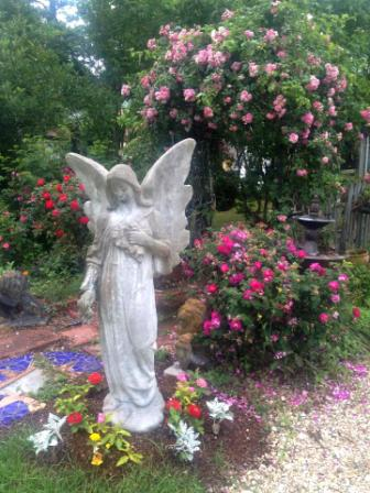 Kelly Dickinson's concrete angel statue lends a peaceful air to the garden roses.