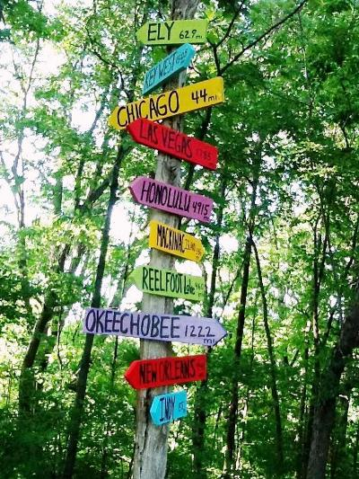 Kim Lubeck's favorite destinations mounted on a old tree limb....