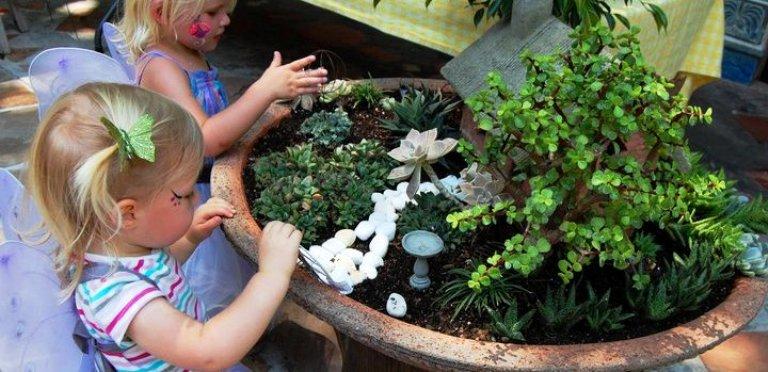 Easy Fairy Gardens Anyone Can Do!