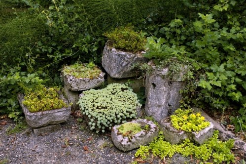 The Berry Botanic Garden, Marv Bondarowicz  photo