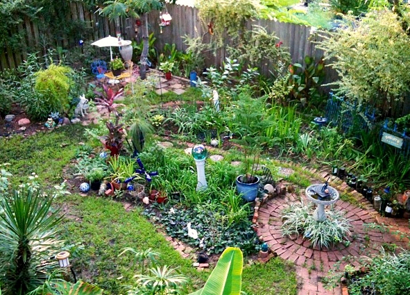 Sydney Minor's garden of FMG treasures