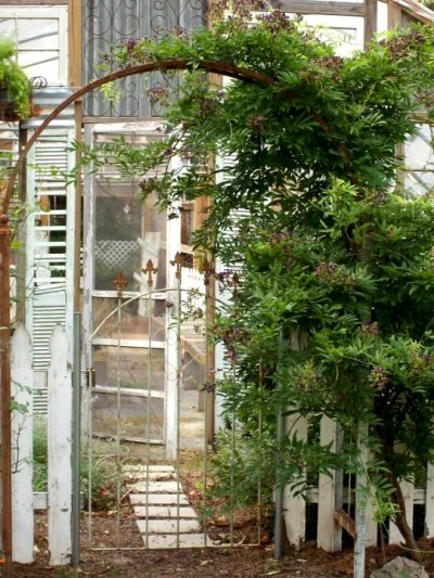 Kathy Gilbert's arbor entrance to her greenhouse garden