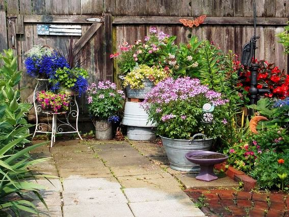 Carol Lang's flowers and Flea Market finds