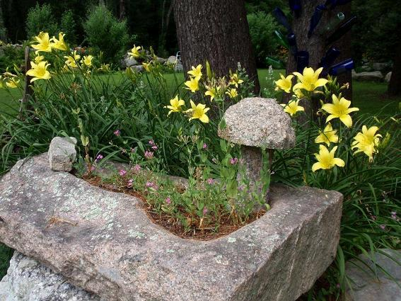 This is my natural container...an old slab of granite planted with pink Catchfly