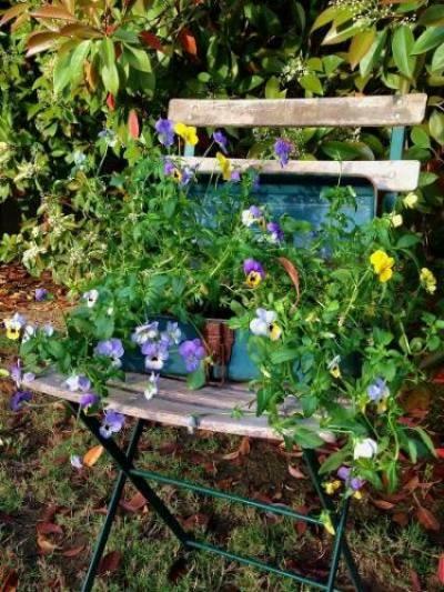 A place for Jane Krauter's planter box