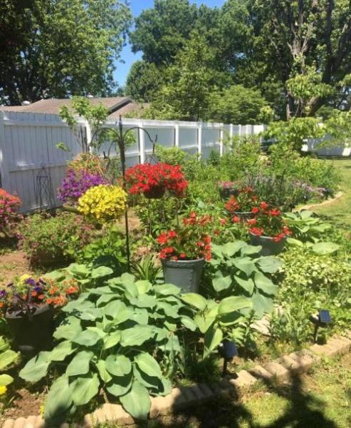 LeeAnn Coleman's wide and deep flower border