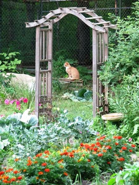 Margie's garden arch focal point