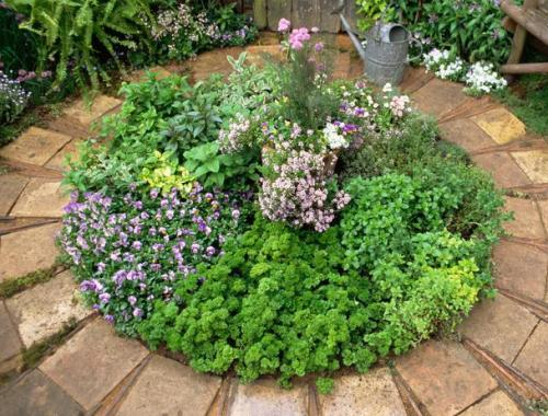 Garden design ideas | Flea Market Gardening on circle cooking ideas, french country garden ideas, circular garden ideas, butterfly garden ideas, patio vegetable garden ideas, brick garden edging ideas, english garden ideas, garden layout ideas, farmhouse garden ideas, round garden ideas, circle garden edging ideas, garden and outdoor living ideas, circle planting ideas, lavender garden ideas, small flower garden ideas, small garden plans ideas, circle vegetable garden ideas, circle herb garden, circle garden layout, circle bedding ideas,