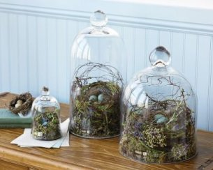 Bell Jars Glass Domes