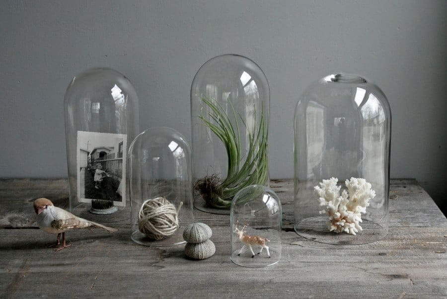 Glass Cloches A Pedestal For Your Odds And Ends Flea