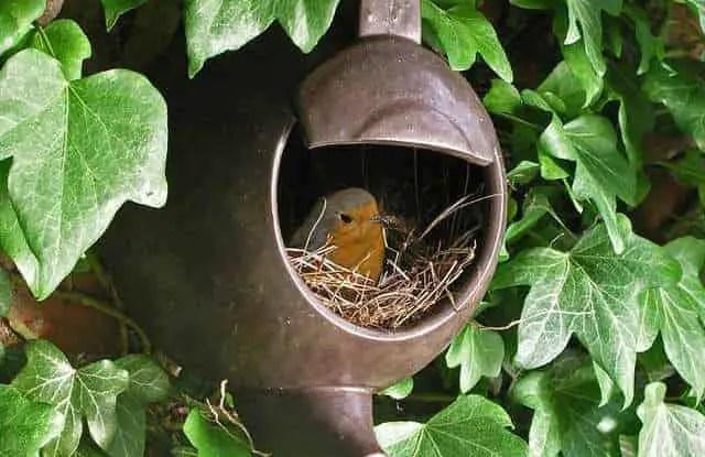 Vintage Teapot Bird Shelter