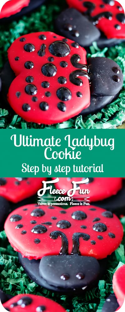 how to make a ladybug cookie tutorial