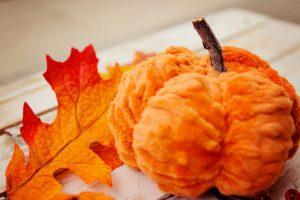 scrunched-pumpkin-tutorial