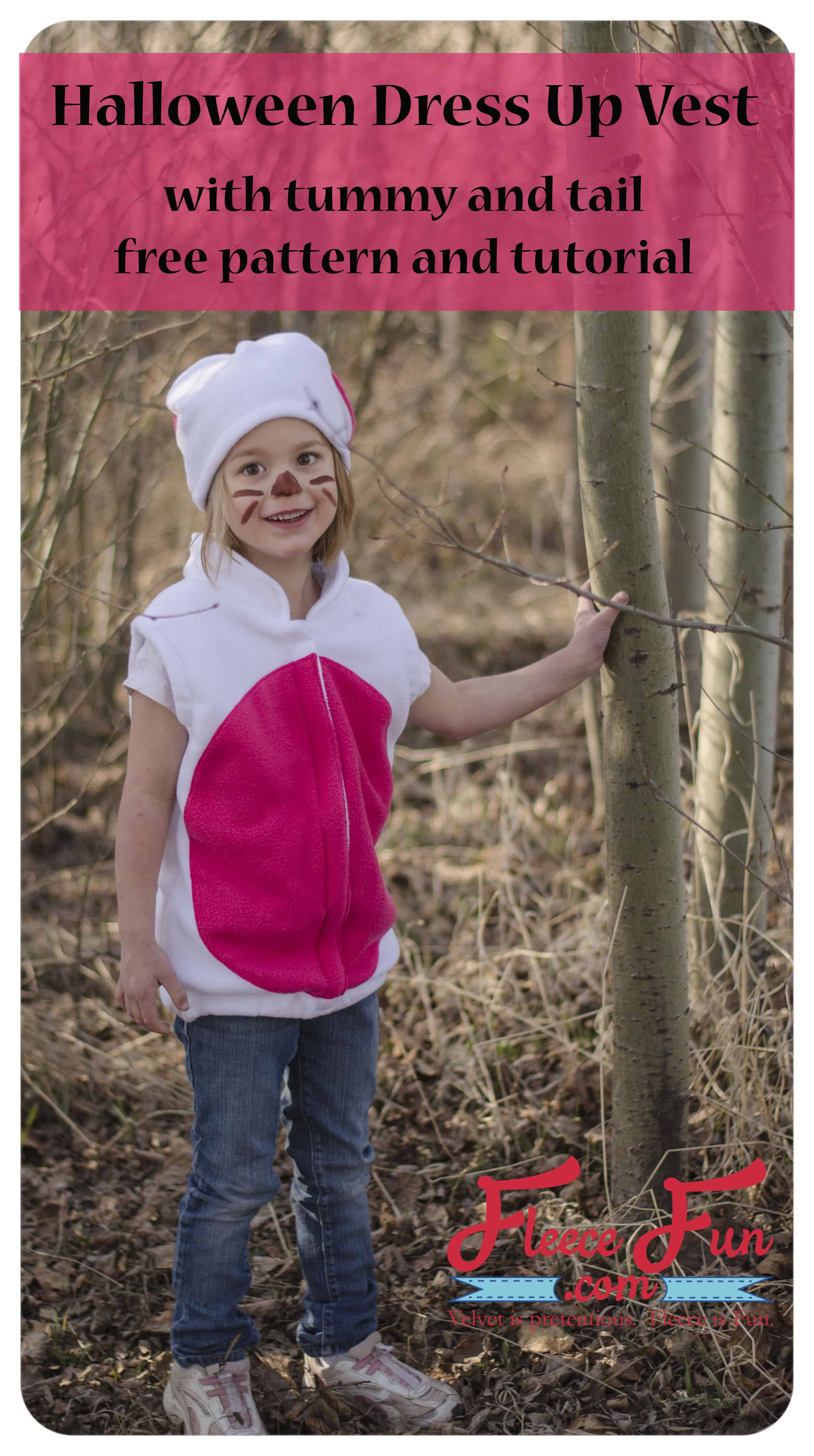 I love this cute dress up vest that matches a fleece hat!  Looks like an easy to sew costume too!  Love this easy DIY idea.