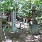 Maruyama Hachijyu Hakkasho: Urban Virgin Forest in Sapporo