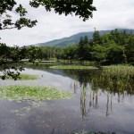 Shiretoko Goko Lakes(知床五湖)