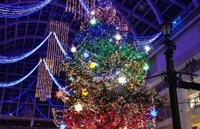Jumbo Christmas Tree Illumination In Sapporo Factory Atrium [Nov, 1 – Dec, 25]