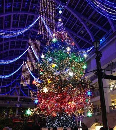 Jumbo Christmas Tree Illumination In Sapporo Factory Atrium [Nov, 1 – Dec, 25]