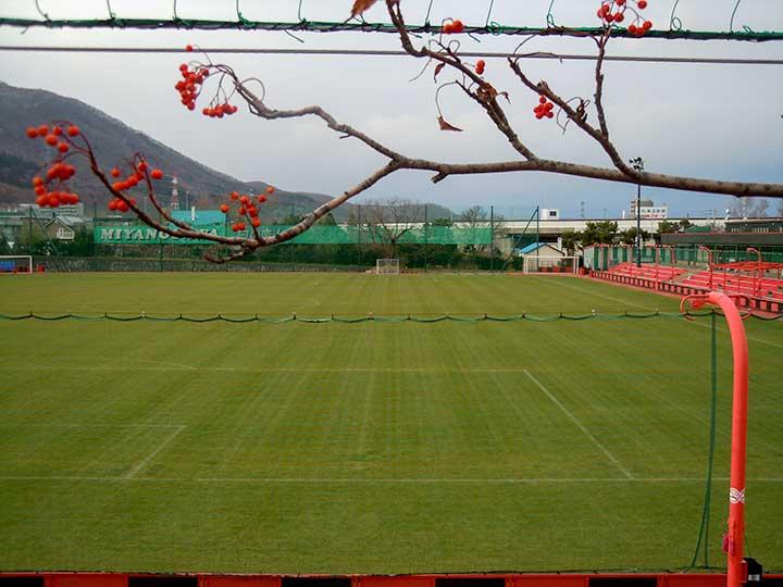 Consadole home field