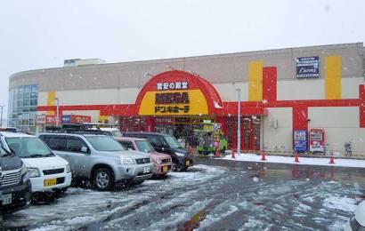MEGA Don Quijote Shinkawa: Discount Store