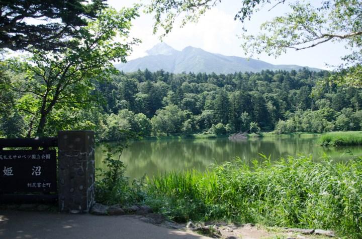 Himenuma pond