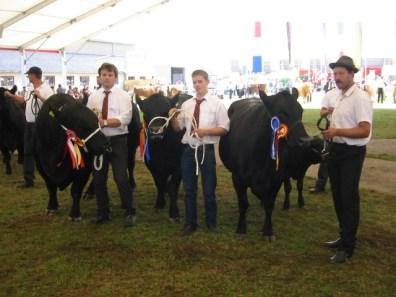 Die siegreichen Tiroler Angustiere von Familie Hager und Familie Hochfilzer.