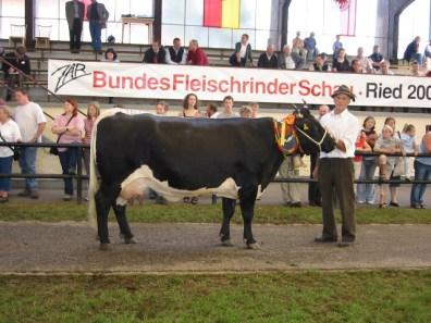 TZ-Gruppensiegerin Buchauer