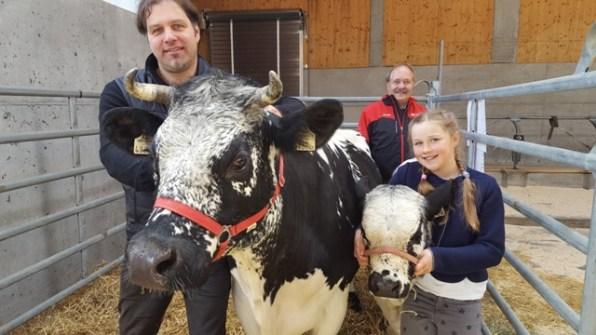 Ernst Ragg aus Leutasch präsentierte mit seiner Tochter Susanna die Sprinzenkuh Jasmin mit Kalb Juliana