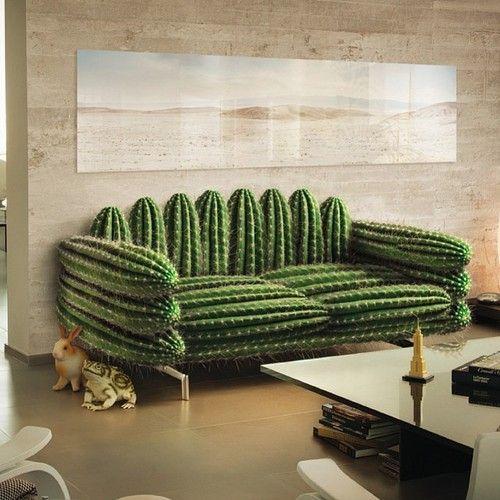 Dans la dco il y a des cactus   Floriane Lemari