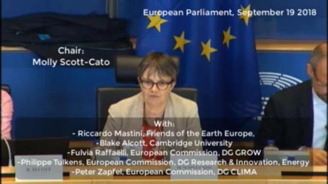 Molly Scott Cato MEP chairs discussion of David Fleming's TEQs system