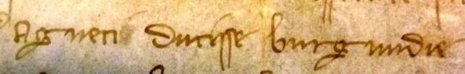 Extrait, «Agneti Ducisse burgundie», 1310, ADCO, B1253