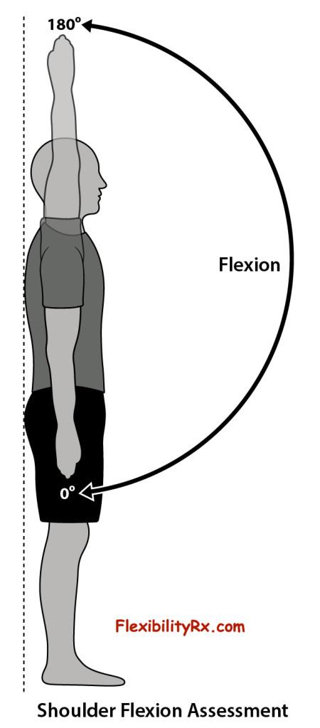 Shoulder-Flexion-Assessment