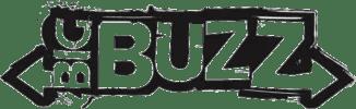 Flexifoil Big Buzz Kite logo