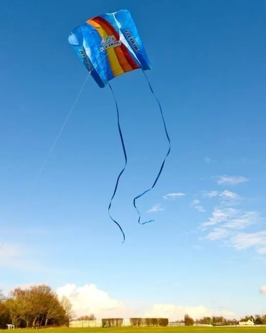 flexifoil family kite image