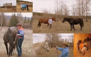 Cariboo Chilcotin Horsemanship
