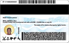 new driver license back